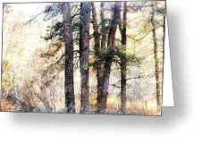 The Forest Speaks Greeting Card