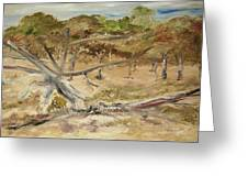 The Fourty-niner Highwaytrees Greeting Card