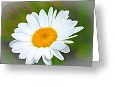 The Friendliest Flower Greeting Card