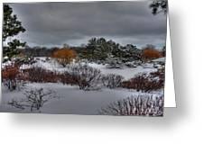 The Garden In Winter Greeting Card by David Bearden