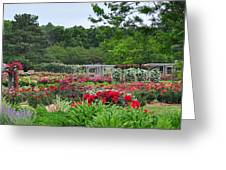 The Garden Of Bloom Greeting Card