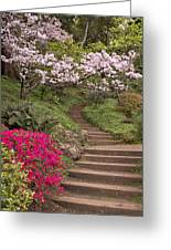 The Garden Steps Greeting Card