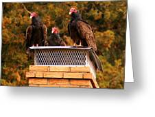 The Gathering Of Vultures Greeting Card