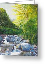 The Gladeburn Beside The Milford Track Fiordland New Zealand Greeting Card