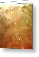 The Glow Greeting Card