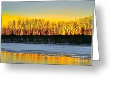 The Golden Pond Greeting Card