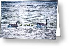 The Goose Family Greeting Card