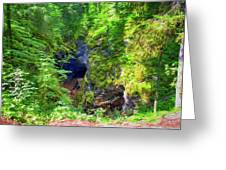 The Gorge In The Wood Greeting Card