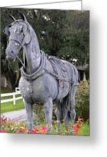 Horse At The Grand Oaks Resort Greeting Card