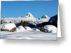 The  Grand Tetons From Alta Wyoming Greeting Card