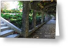 The Grape Arbor Path Greeting Card