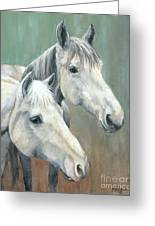 The Grays - Horses Greeting Card