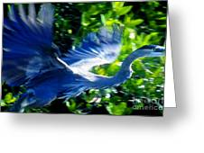 The Great Blue Greeting Card