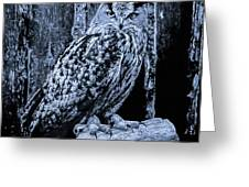 Majestic Great Horned Owl Bw Greeting Card