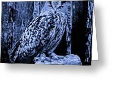 Majestic Great Horned Owl Blue Indigo Greeting Card