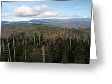 The Great Smoky Mountains 16 Greeting Card