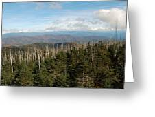 The Great Smoky Mountains 17 Greeting Card