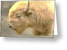 The Great White Buffalo Greeting Card