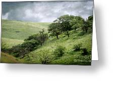 The Green Hills Of Home Greeting Card