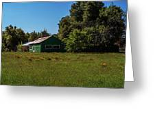 The Green Shack Greeting Card