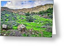 The Greening Of The Las Llajas Trail  Greeting Card
