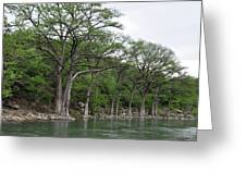 The Guadalupe River Greeting Card