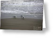 The Gulf In Shades Of Gray - Formation Greeting Card