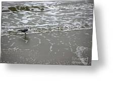 The Gulf In Shades Of Gray - On The Edge Greeting Card