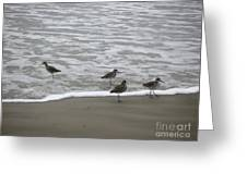 The Gulf In Shades Of Gray - One Opposed Greeting Card