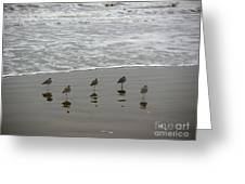The Gulf In Shades Of Gray - Perfect Wave Greeting Card