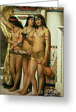 The Handmaidens Of Pharaoh Greeting Card by John Collier