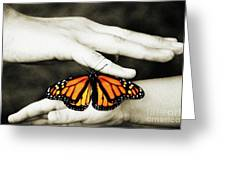 The Hands And The Butterfly Greeting Card