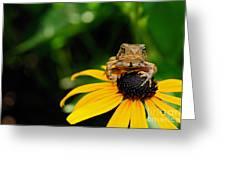 The Harbinger Greeting Card
