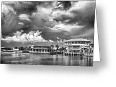 The Harbor Greeting Card