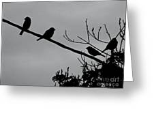 Leo, The Hawk Is Two Doors Down Greeting Card