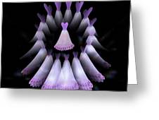 The Heart Of The Women Circle - Purple Greeting Card by Jacqueline Migell