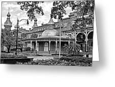 The Henry B. Plant Museum Bw Greeting Card