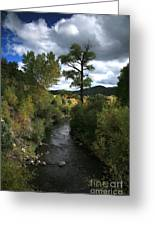 The High Road To Taos Greeting Card by Timothy Johnson