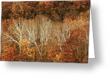 The Hills In Autumn Greeting Card