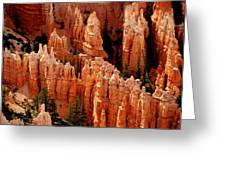 The Hoodoos In Bryce Canyon Greeting Card