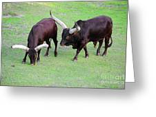 The Horns Greeting Card