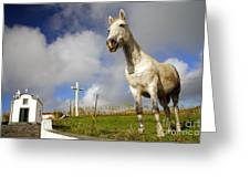 The Horse And The Chapel Greeting Card