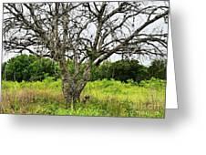 The Hunting Tree Greeting Card