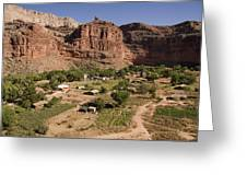 The Indian Village Of Supai Sits Greeting Card