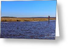 The Intracoastal Waterway In The Georgia Low Country In Winter Greeting Card