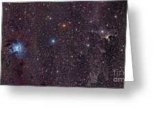 The Iris Nebula In Cepheus Greeting Card by John Davis