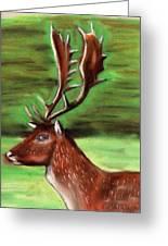 The Irish Deer Greeting Card