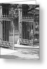 The Iron Gates Greeting Card