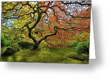 The Japanese Maple Tree In Spring Greeting Card
