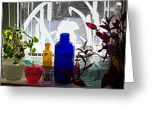 The Kitchen Window Sill Greeting Card